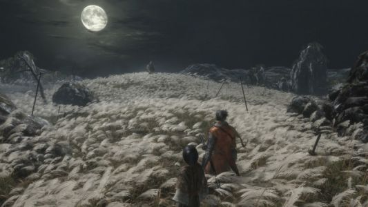 Sekiro: Shadows Die Twice Review - Exaltation Amidst Expiration