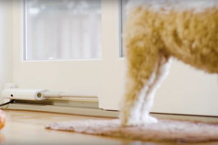 This device detects when your pet is at the door and opens it for them